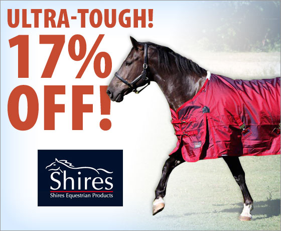 Ultra-tough! 17% Off the Shires® StormCheeta 2000D Turnout Blanket!