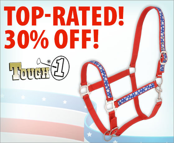 Top-rated! 30% off the Tough-1® Stars Nylon Halter!