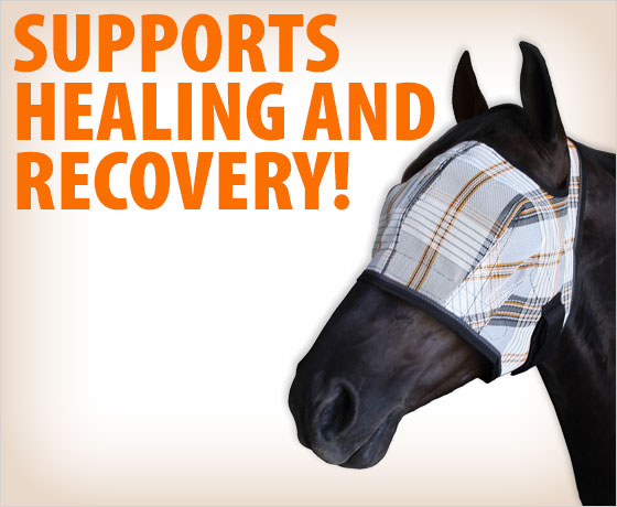 Supports healing and recovery! Post-Surgical Recovery Fly Mask†!