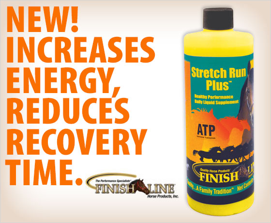 New! Increases energy, reduces recovery time. Finish Line® Stretch Run Plus™!