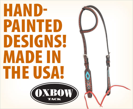 Hand-painted designs! Made in the USA! Oxbow Tack® Aztec Beaded Slip Ear Headstall!