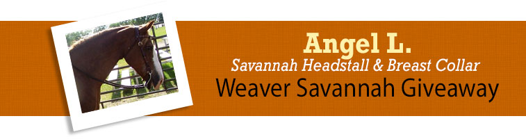 Horse.com's Weaver Savannah Giveaway