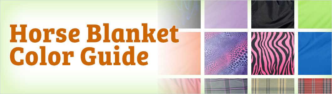 Horse Blanket Color Guide