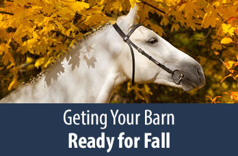 Getting Your Barn Ready for Fall