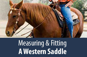 Measuring and Fitting a Western Saddle