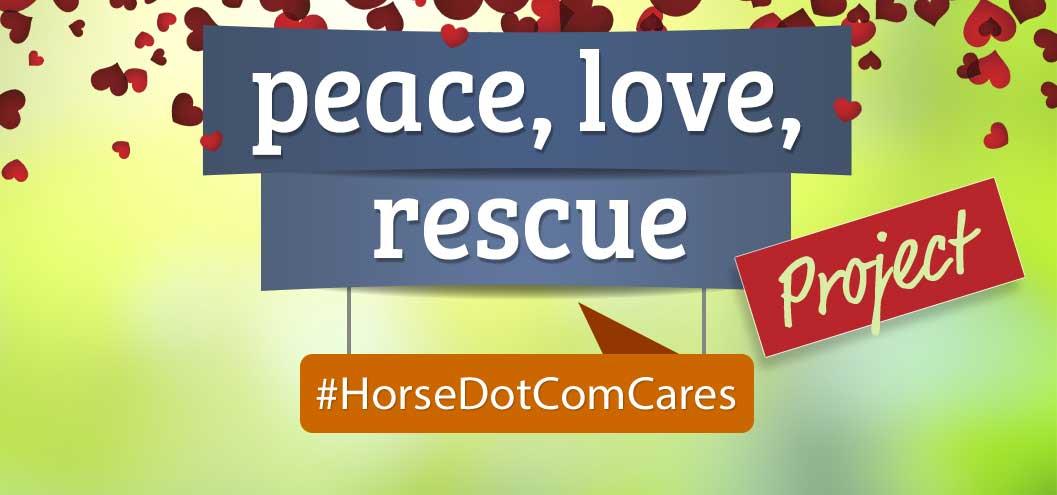 Peace, Love, Rescue Project!