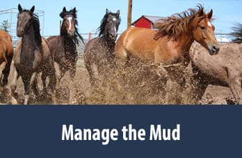 Manage the Mud