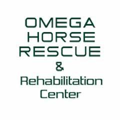 Omega Horse Rescue & Rehab Center