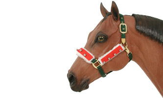 Holiday Horse Halter Bridle Sete