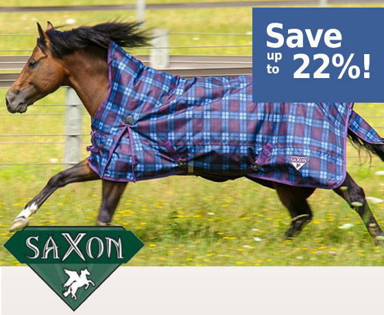 Saxon® 1200D Turnout Blanket - Save up to 22%