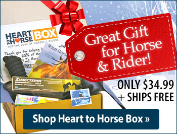 Heart to Horse Box, the Perfect Holiday Gift for Horses and Riders