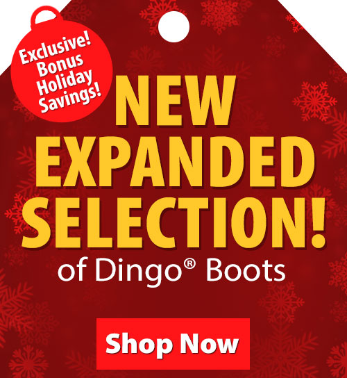 Save over 20% on Dingo Boots!