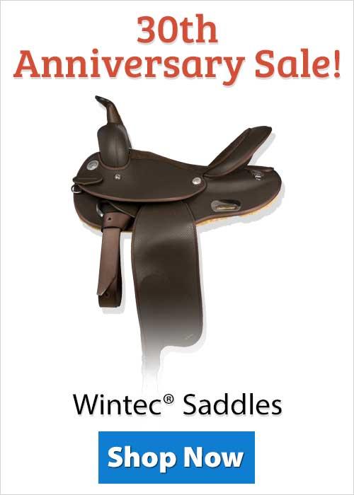 Shop Wintec® Saddles!