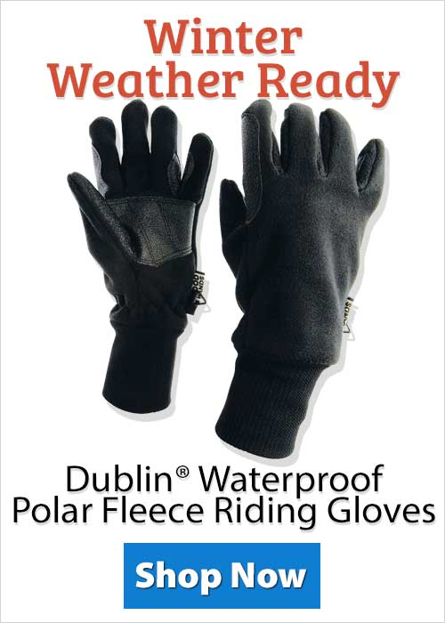Shop Dublin® Waterproof Polar Fleece Riding Gloves!