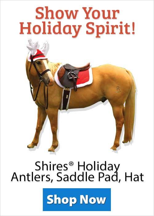 Shop Shires® Holiday Antlers, Saddle Pad, Hat!