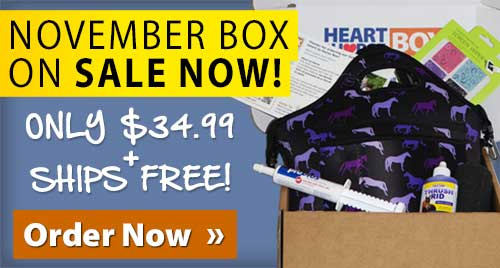 Shop Heart2Horse!