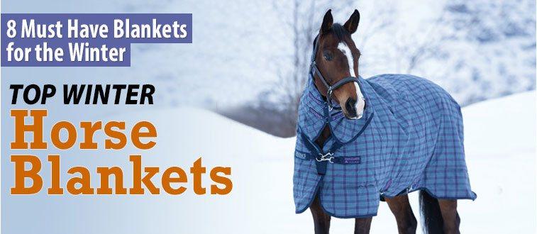 Top Winter Horse Blankets