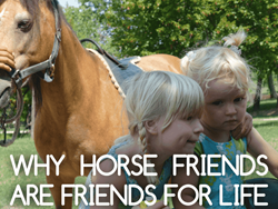 Thumbnail WHY HORSE FRIENDS ARE FRIENDS FOR LIFE