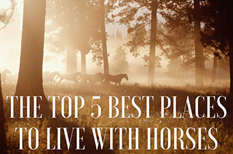 Top Five Horse Towns