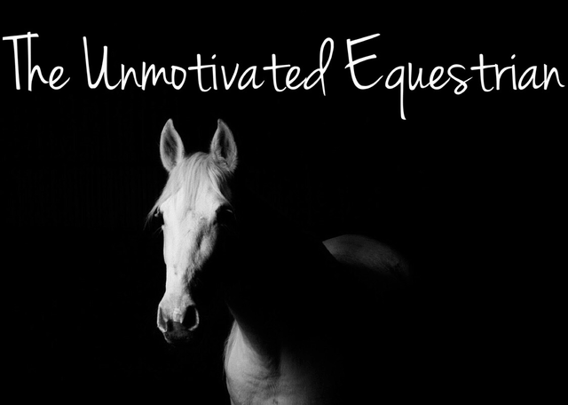 The Unmotivated Equestrian