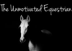 Thumbnail The Unmotivated Equestrian